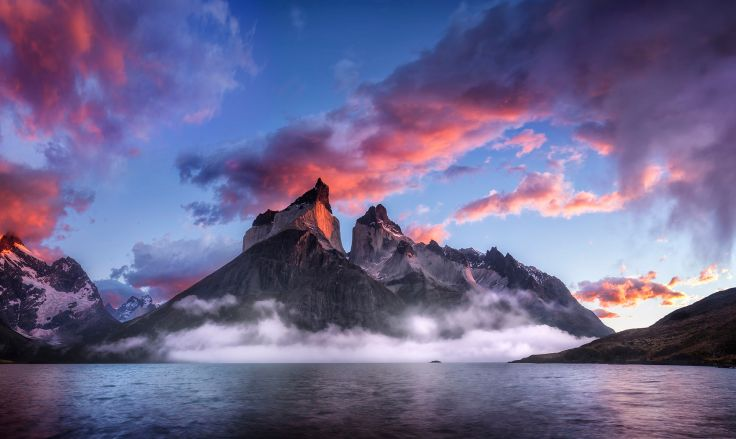 Enter The Dragon by Timothy Poulton