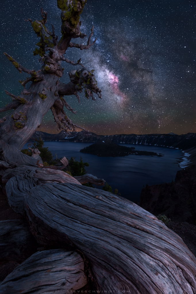 'Ancient Tree Overlooking Crater Lake' by Steve Schwindt