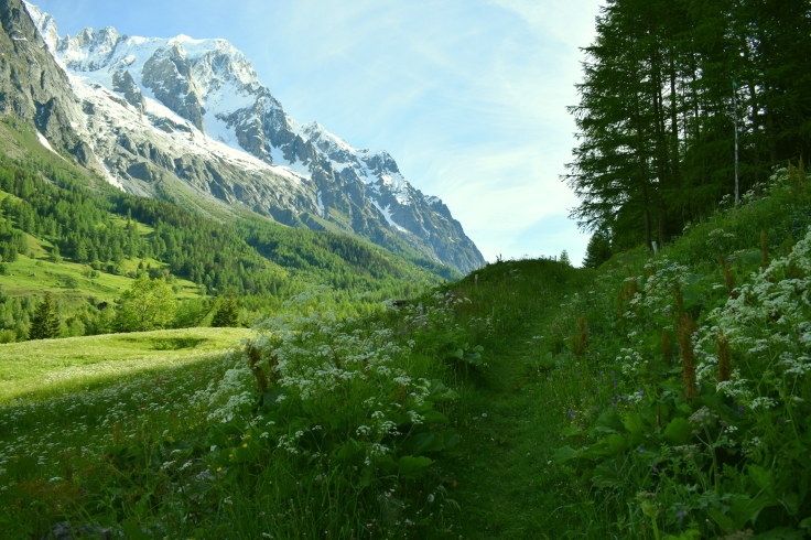 Path Through the Meadow of Val Ferret by Unknown