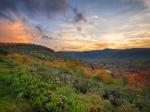 'Sunset' by William Fultz II